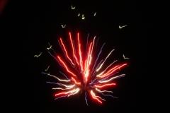 Fireworks_8-6-05__3